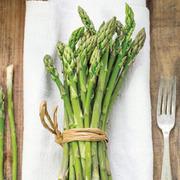 Asparagus officinalis 'Amaro Montina' (Spring/Autumn Planting) - 25 asparagus crowns