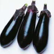 Aubergine 'Moneymaker' F1 Hybrid - 1 packet (20 aubergine seeds)