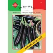 Aubergine 'Viserba' - Vita Sementi® Italian Seeds - 1 packet (660 aubergine seeds)