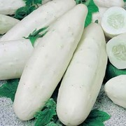 Cucumber 'Long White' - 1 packet (15 cucumber seeds)