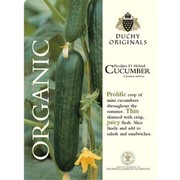 Cucumber 'Picolino' - Duchy Originals Organic Seeds - 1 packet (4 cucumber seeds)