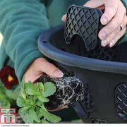New and Improved Easy Fill Hanging Basket - 1 basket