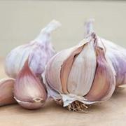 Garlic 'Germidour' (Spring/Autumn Planting) - 2 garlic bulbs