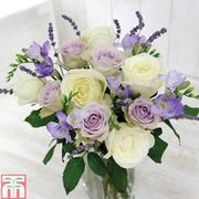 Grapevine Bouquet - Gift - 25 stem bouquet