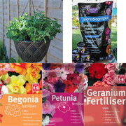 Hanging Basket Essentials Collection - 1 collection