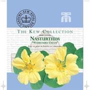 Nasturtium 'Whirlybird Cream' - Kew Collection Seeds - 1 packet (20 nasturtium seeds)