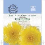 Cornflower 'Dairy Maid' - Kew Collection Seeds - 1 packet (100 cornflower seeds)