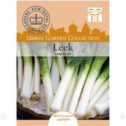 Leek 'Lancelot' - 1 packet (75 leek seeds)