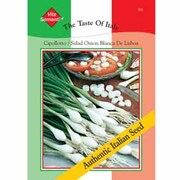Spring Onion 'Cipollotto Blanca de Lisboa' - Vita Sementi® Italian Seeds - 1 packet (1400 spring onion seeds)