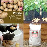 Patio Potato Growing Kit - 1 collection