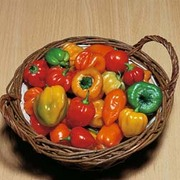 Chilli Pepper 'Tropical Heat' (Atomic) - 1 packet (20 chilli pepper seeds)