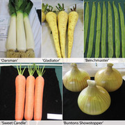 Show Vegetable Collection - 5 packets - 1 of each variety (755 vegetable seeds in total)