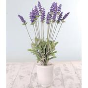 Silk Lavender - Gift - 1 x Silk Lavender