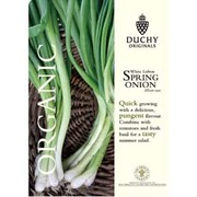 Spring Onion 'White Lisbon' - Duchy Originals Organic Seeds - 1 packet (400 spring onion seeds)