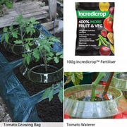 Tomato Growing Essentials Kit - 1 collection (100g Incredicrop®, 3 Tomato Waterers + growing bag)