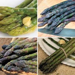 Asparagus officinalis Collection (Spring/Autumn Planting)