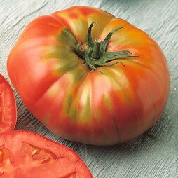 Tomato 'Brandywine' - Heritage