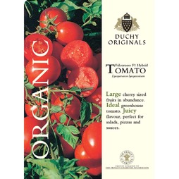 Tomato 'Falcorosso' F1 Hybrid - Duchy Originals Organic Seeds