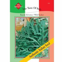 Wild Rocket (Rucola Selvatica) - Vita Sementi® Italian Seeds