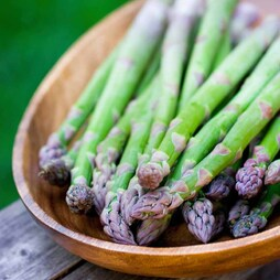 Asparagus officinalis 'Pacific Challenger' (Spring/Autumn Planting)