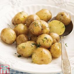 Potato 'Abbot'