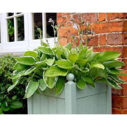 Classic Planter 15 Heritage Sage