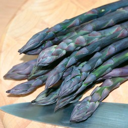Asparagus officinalis 'Pacific Purple' (Spring/Autumn Planting)