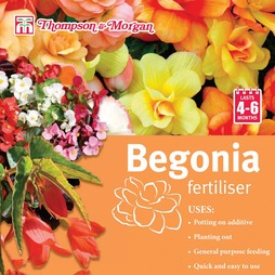 Begonia Fertiliser