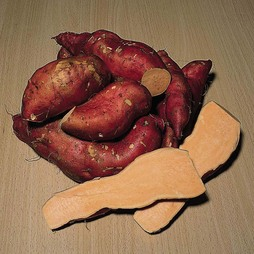 Sweet Potato 'Beauregard Improved'