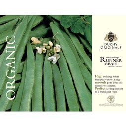 Runner Bean 'White Emergo' - Duchy Originals Organic Seeds