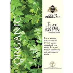 Parsley (Flat Leaved) - Duchy Originals Organic Seeds