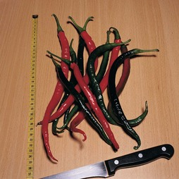 Chilli Pepper 'Joe's Long' (Hot)