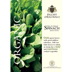 Spinach 'Palco' F1 Hybrid - Duchy Originals Organic Seeds