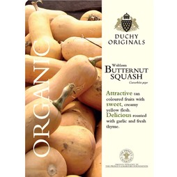 Squash 'Waltham Butternut' (Winter) - Duchy Originals Organic Seeds