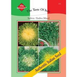 Endive 'Mixed' - Vita Sementi® Italian Seeds
