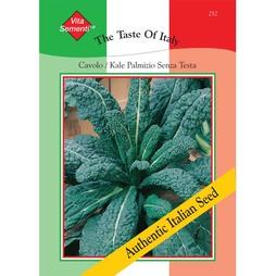 Kale 'Cavolo Palmizio Senza Testa' - Vita Sementi® Italian Seeds