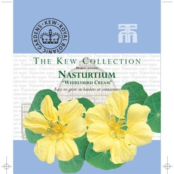 Nasturtium 'Whirlybird Cream' - Kew Collection Seeds