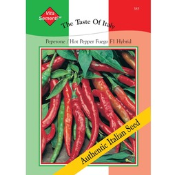 Chilli Pepper 'Fuego' F1 Hybrid (Hot) - Vita Sementi® Italian Seeds
