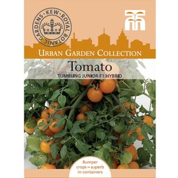 Tomato 'Tumbling Junior' F1 Hybrid - Kew Collection Seeds