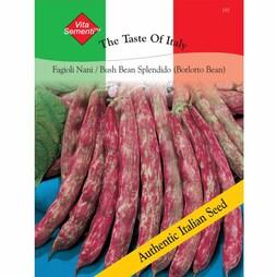 Dwarf Bean 'Splendido' (Borlotti Bean) - Vita Sementi® Italian Seeds