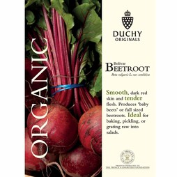 Beetroot 'Bolivar' (Globe) - Duchy Originals Organic Seeds