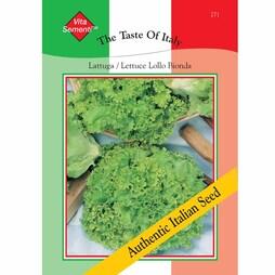 Lettuce 'Lollo Bionda' (Loose-Leaf) - Vita Sementi® Italian Seeds
