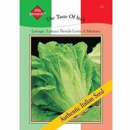 Lettuce 'Bionda Lenta a Montare' (Romaine) - Vita Sementi® Italian Seeds