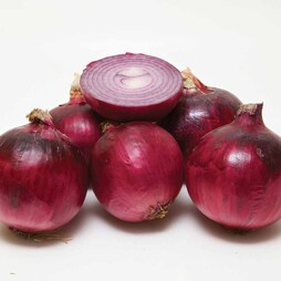 Onion 'Red Arrow' (Spring Planting)