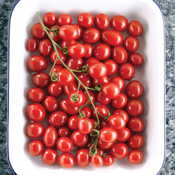 Tomato 'Sungrape' F1 Hybrid