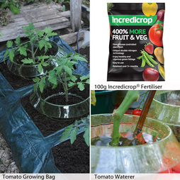 Tomato Growing Essentials Kit