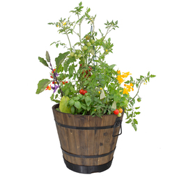 VegTrug™ Wooden Barrel Planter (Burnt Oak)