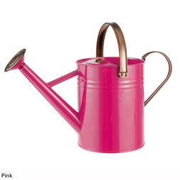 3.8L Vintage Watering Can