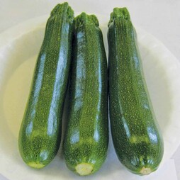 Courgette 'Venus' F1 Hybrid - RHS endorsed vegetable seeds