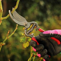 Kent & Stowe Traditional Bypass Secateurs